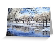 Eco Park IR Greeting Card
