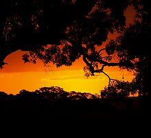 epic sunset by Jacqe Matelot