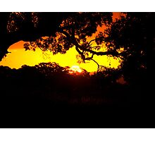 bleeding sunset Photographic Print