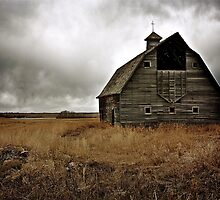 Old Barn by Linda Bianic