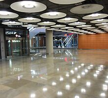 Madrid Airport 11 by Daidalos