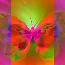 """Butterfly 2 (from """"Butterflies"""" collection) by EvaMarIza"""