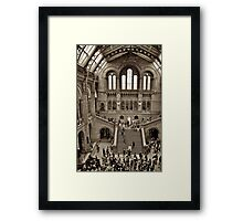 London Natural History Museum Framed Print