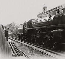 Goathland - North Yorks Moors Railway by Trevor Kersley