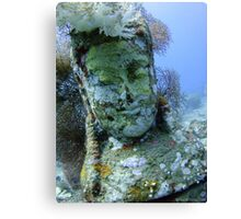 Underwater Smiley Budda statue at the Temple Garden Canvas Print