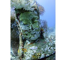 Underwater Smiley Budda statue at the Temple Garden Photographic Print