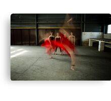 ballet 10 Canvas Print