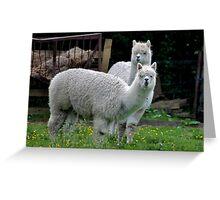 Llama Llama Greeting Card