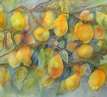 Quince from Gainsborough's Garden by bevmorgan