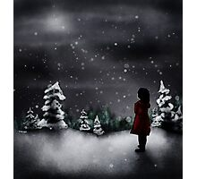 Christmas scene 2013 Photographic Print
