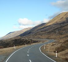 New Zealand roadways by pgardose