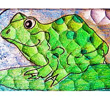 Frog funny textured colorful frog Photographic Print