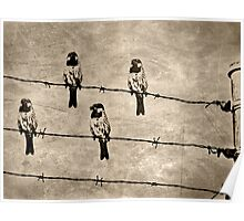 ©DA On The Fence With Freedom IA. Poster