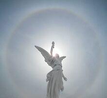 Angel Solar Halo by David Tiller