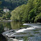 Afon Dyfrdwy by Susan E. King