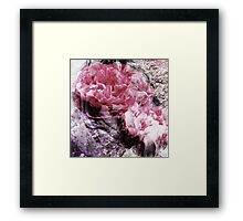 enchanted stone Framed Print
