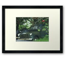 Hiding From The Cops? Framed Print