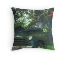 Hiding From The Cops? Throw Pillow
