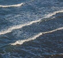 Waves by Scott Dovey