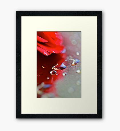 November  rain . Guns N' Roses  & (Umbrellas of Cherbourg) by Brown Sugar . F**Favorites: 10 Views: 1106 !.  GRACIAS AMIGOS !!! Featured Safe Haven Group. Framed Print