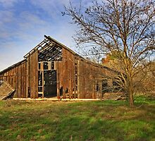 Old Barn  - Rural San Joaquin Valley by Buckwhite