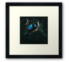 In the Forest of the Night Framed Print