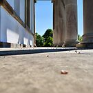 Hardwick Monument - A Lower Angle by Mark Willson
