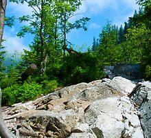 Rohace, Tatras National Park in Slovakia by zuzanab