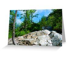 Rohace, Tatras National Park in Slovakia Greeting Card