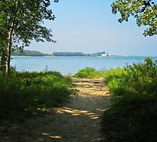 Sheldon Marsh Beach Trail by SRowe Art