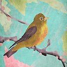 Vintage Bird on a Branch by colinrac