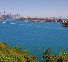 Manns Point Lookout by ijam357
