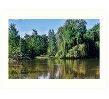 Woodland Park 2 Art Print