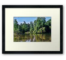 Woodland Park 2 Framed Print