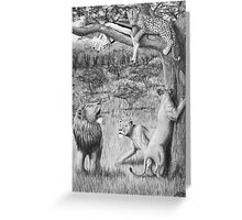 Possession - Leopard and Lions Greeting Card