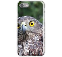 One Wet Goshawk iPhone Case/Skin