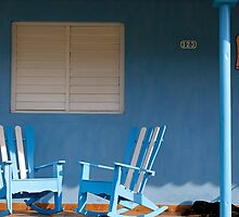 Dog Sleeping at Casa Gonzalo, Vinales, Cuba by buttonpresser