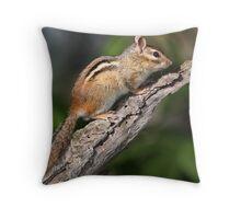 Outlook / Chipmunk Throw Pillow