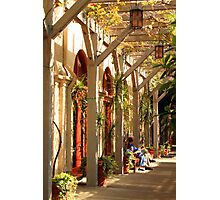 Relaxing In The Breezeway Photographic Print