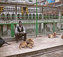 A Nepali man and dogs by jihyelee