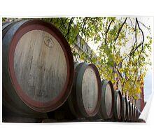 Wine Barrels, Yalumba Cellar Door Poster