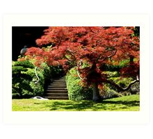 Tree in Japanese Garden Art Print
