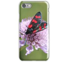 Six-spot Burnet Moth iPhone Case/Skin