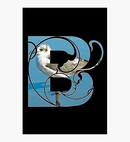 B is for bird Photographic Print