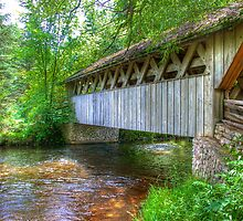 Covered Footbridge-2 by ECH52