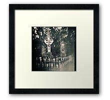 Graves Framed Print