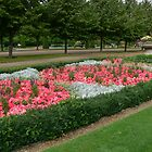 Regent's Park 4 by PhotosByG