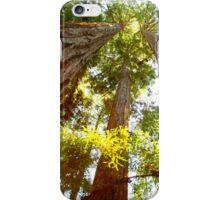 California Redwoods iPhone Case/Skin
