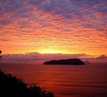 Sky of Fire - New Zealand Greeting Sunrise Over Ocean by Vicktorya Stone