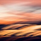 Cloud lands #01 by LouD